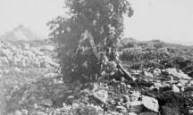 B24_primoMonumento_Partigiani1944