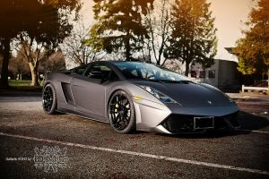 DMC SOHO Gallardo