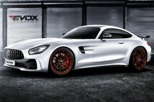 Alpha-N Performance EVOX Mercedes-AMG GT R