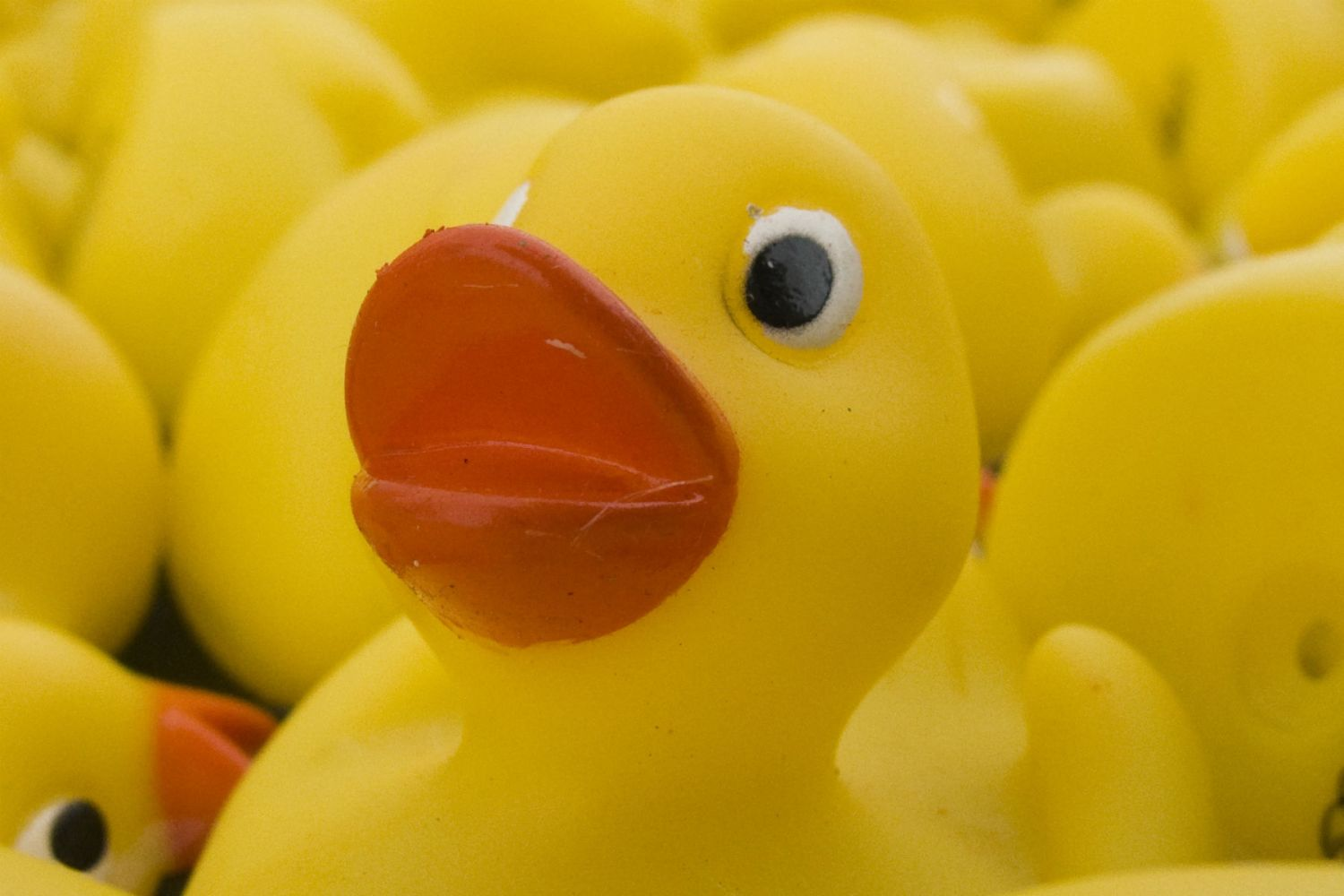 Your car's horn could be replaced with the sound of a QUACKING DUCK