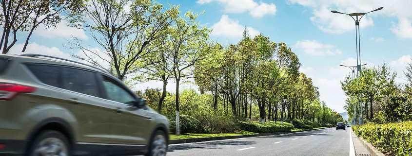 Green car green trees