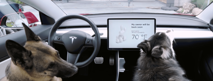 Tesla dog mode sentry mode