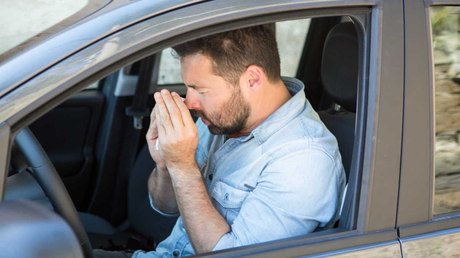 Hay fever behind the wheel
