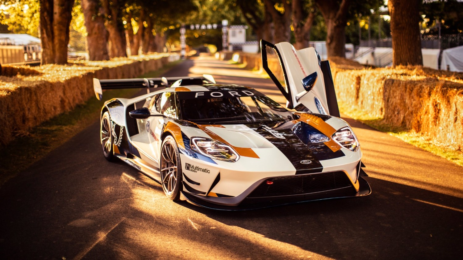 Ford GT MkII track-only supercar at Goodwood