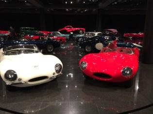 Jaguar XKSS & D-Type