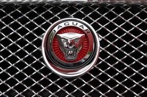 jaguar-xf-my2014-_mg_3700