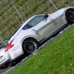 Nissan_decorata ester