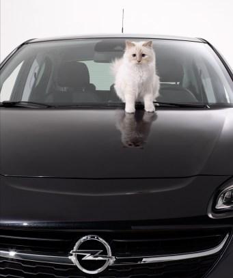 Opel-Corsa-Lagerfeld-292912
