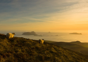 Isole Blasket, Contea di Kerry