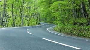strada viaggi