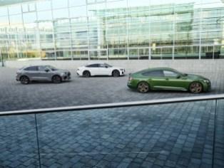 media-Audi RS gamma (6)