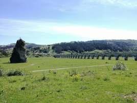 Podul de la Poiana Teiului