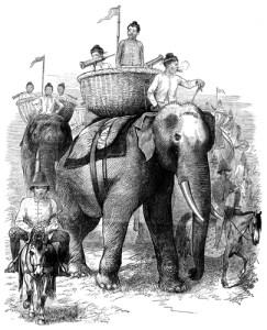 Fig. H. Récolte du benjoin dans les forêts du Laos.