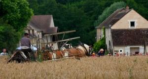 074_Moulin_Vanneau_2012