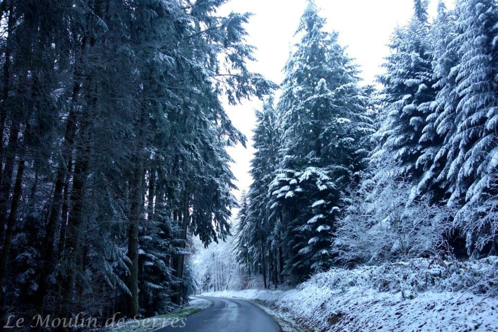 Ally1-neige-LeMoulinDeSerres-AdB