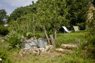 Entre potager et jardin