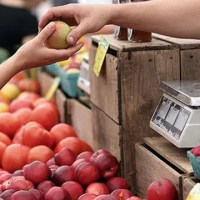 Farmer's Market WIC Coupons Moultrie County Health
