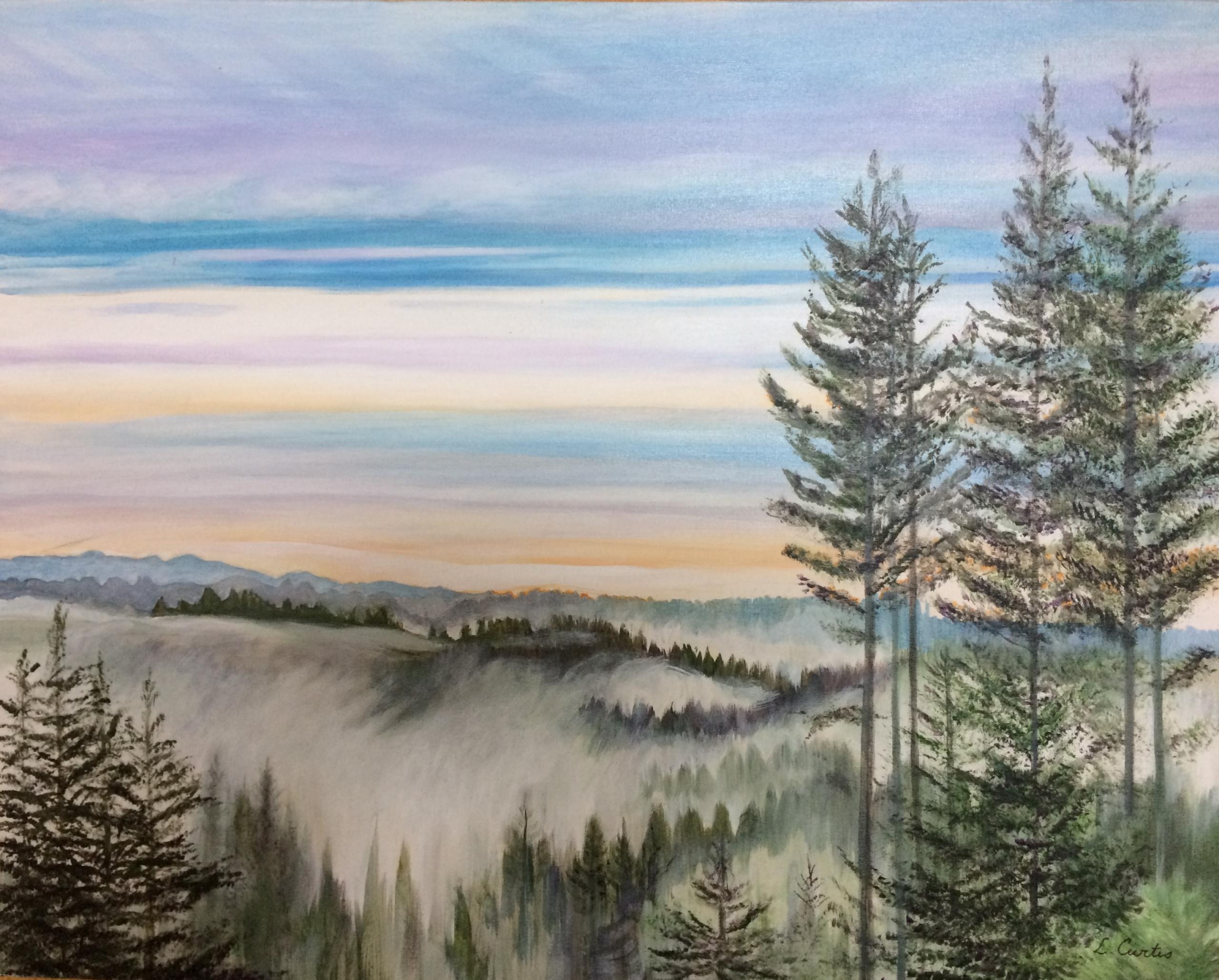 Fog Above Boulder Creek - Linda Curtis