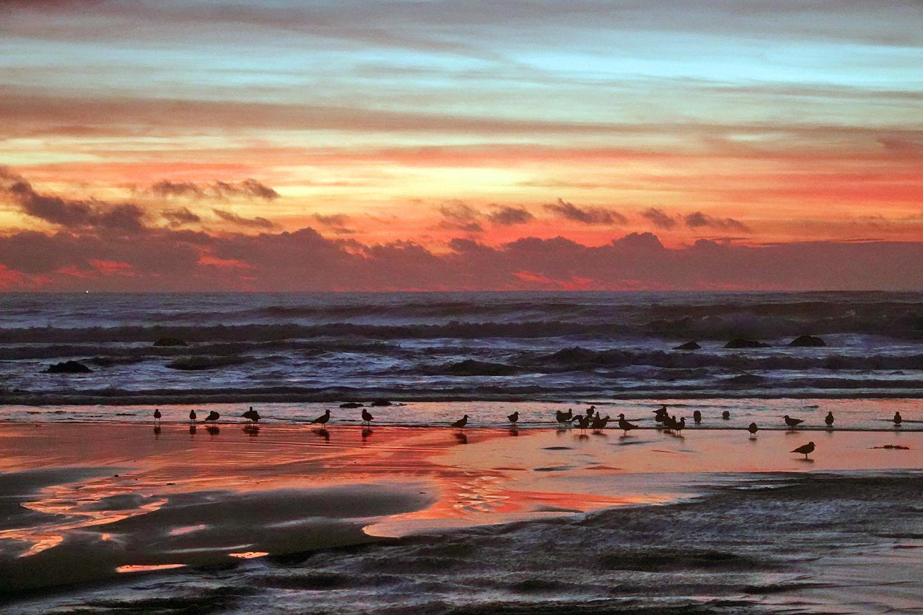 Gazos Creek Sunset 1 - Carla Brennan