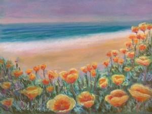 Coastal Poppies - Sarah Orre
