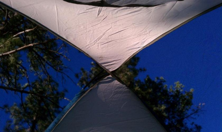 View from the tent when I opened my eyes