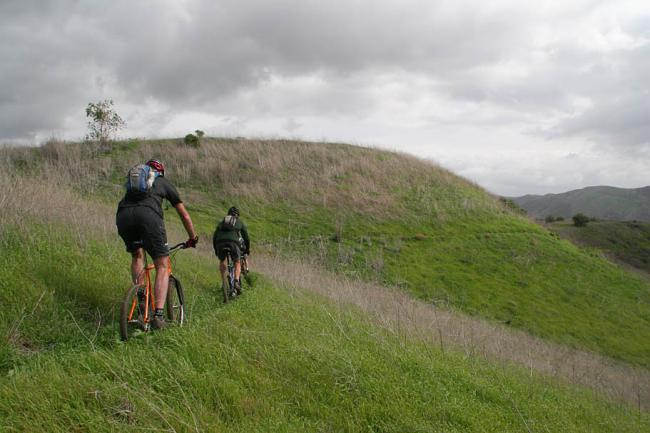 Singletrack Hillside