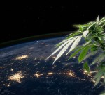 Scientists to Study How Hemp Reacts in Space
