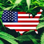 Democrats move to legalize marijuana nationwide in 2021