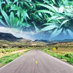 New Mexico's Governor to call special session for marijuana legalization bill