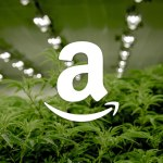 Amazon Drops Marijuana Testing for Employees, Supports Legalization