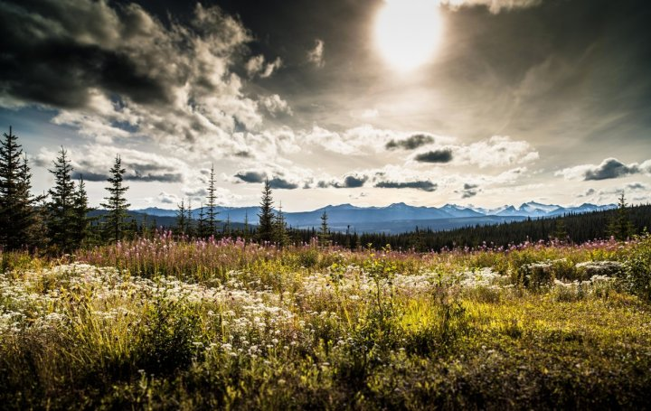 Outside of Sik-E-Dakh in the Skeena River Valley. Photo by Zack Embree.