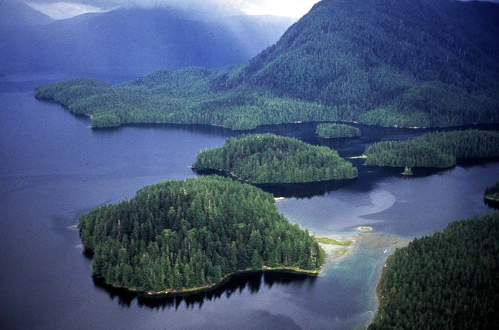 Coastal Great Bear Rainforest: A supertanker's worst nightmare. Photo by Ian McAllister.