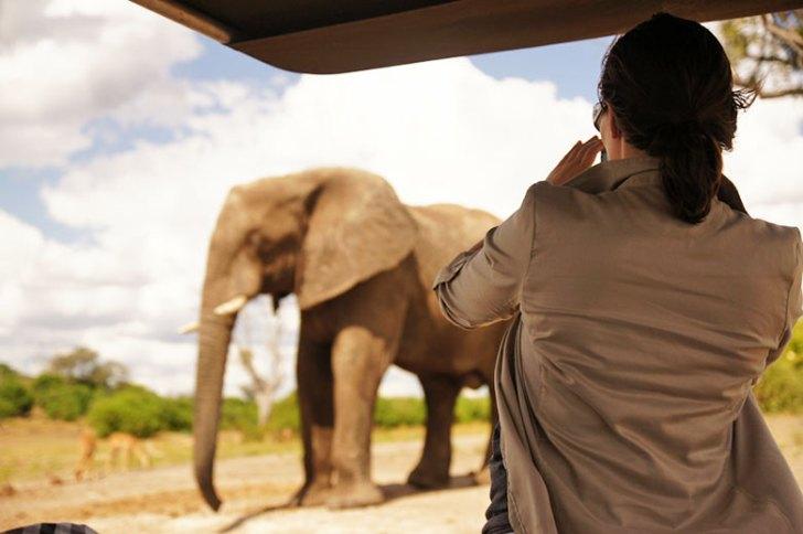 Chobe National Park, Botswana. Photo by Jeff Howard.