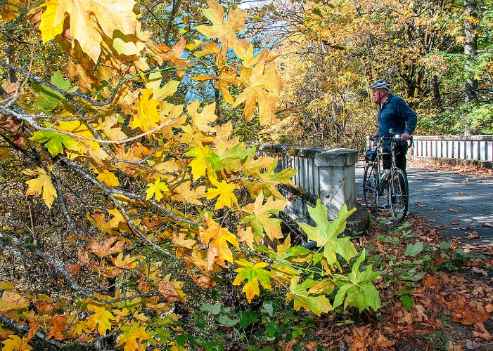 By Oregon Department of Transportation (Biking the HCRH  Uploaded by AlbertHerring) [CC-BY-2.0 (http://creativecommons.org/licenses/by/2.0)], via Wikimedia Commons