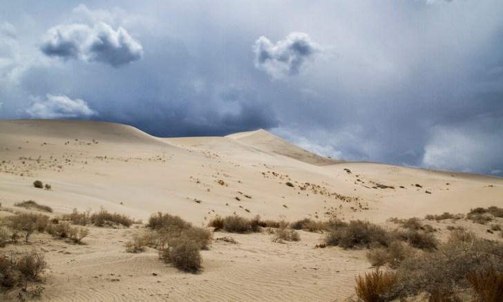 elisabeth-brentano-dunes-6