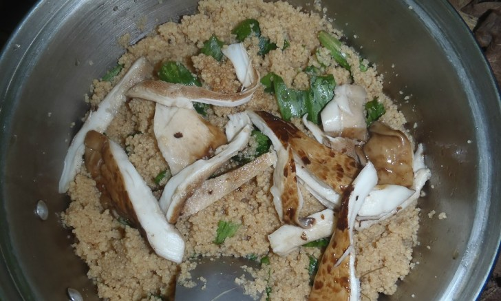 Brian's dinner of couscous, dryad saddle 'shrooms, and wild greens. Photo by Brian McLellan-Tuck.