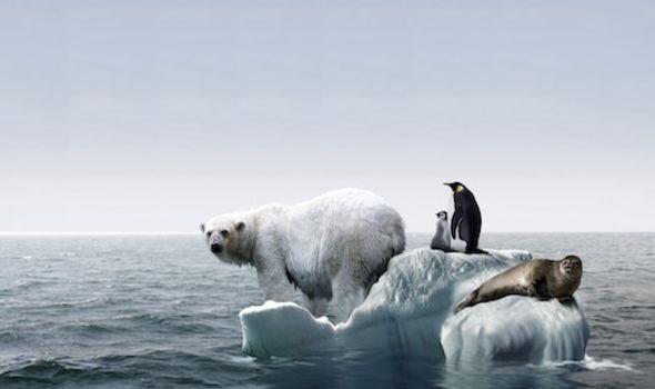 Climate Change Image