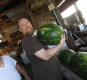 Giant Watermelon From Cad's Produce