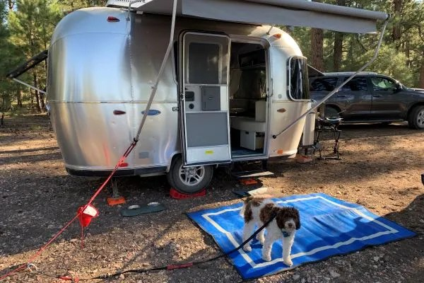 Blue RV Awning Mat outside small RV with dog