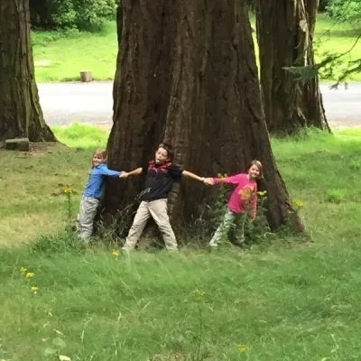 three kids holding hands stretched around a giant tree