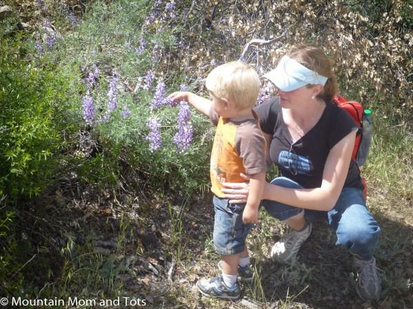 Mountain Mom with Toddler Big E