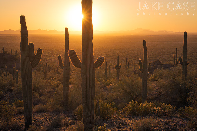 picacho peak state park sunset