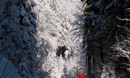 CROSS COUNTRY SKIING & SNOWSHOEING