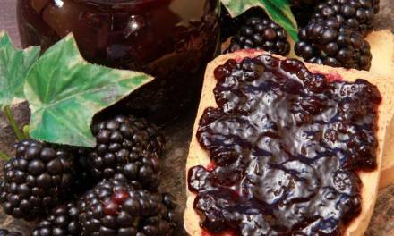 Blackberry Jam Or Topping, Berry Simple Recipe