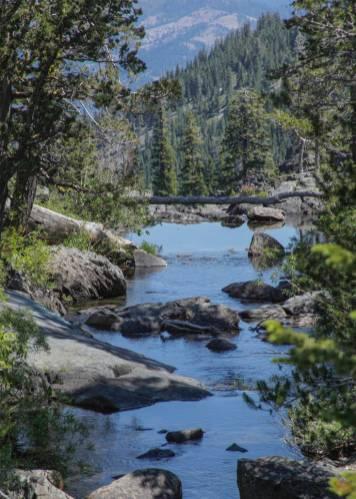 Frazier creek July 2013