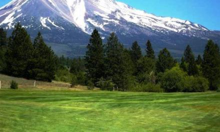 Mount Shasta: Viewed From The Fairways