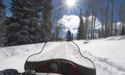 A Wild Ride With The Butte Meadows Hillsliders