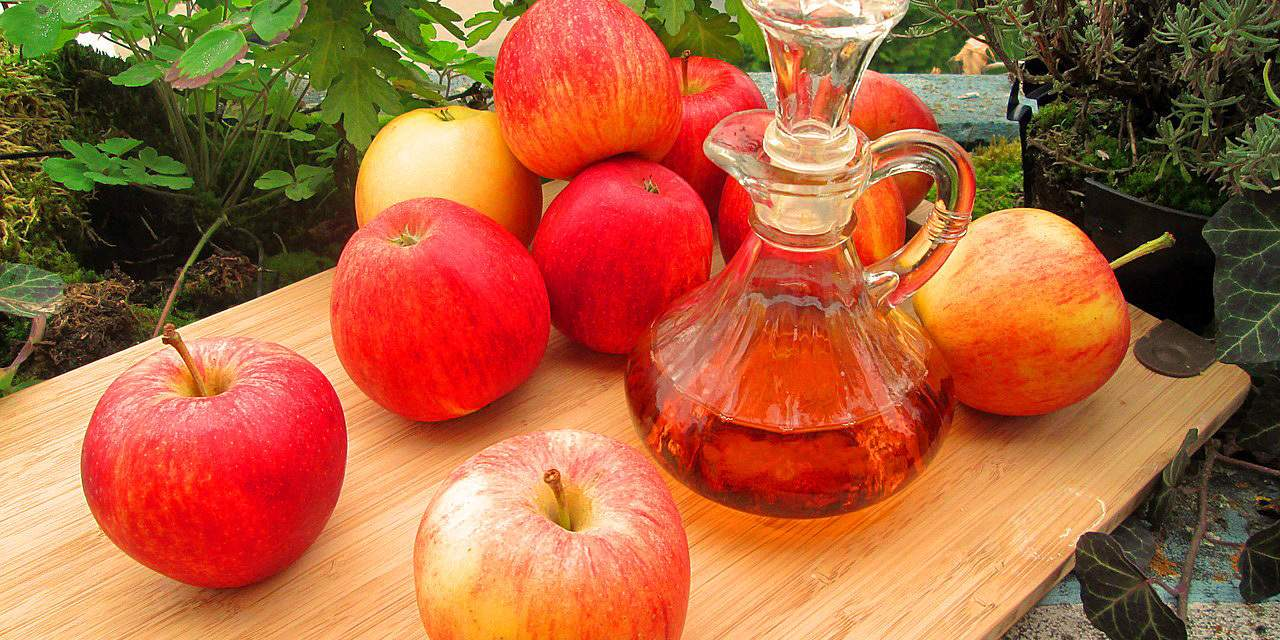 A Tangy Vinegar Story