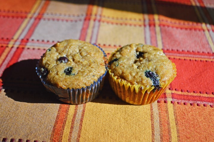 blackberry muffins, mountain valley living