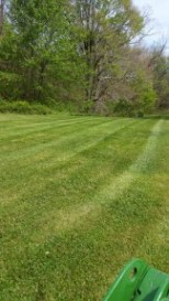 Mowing & Maintenance
